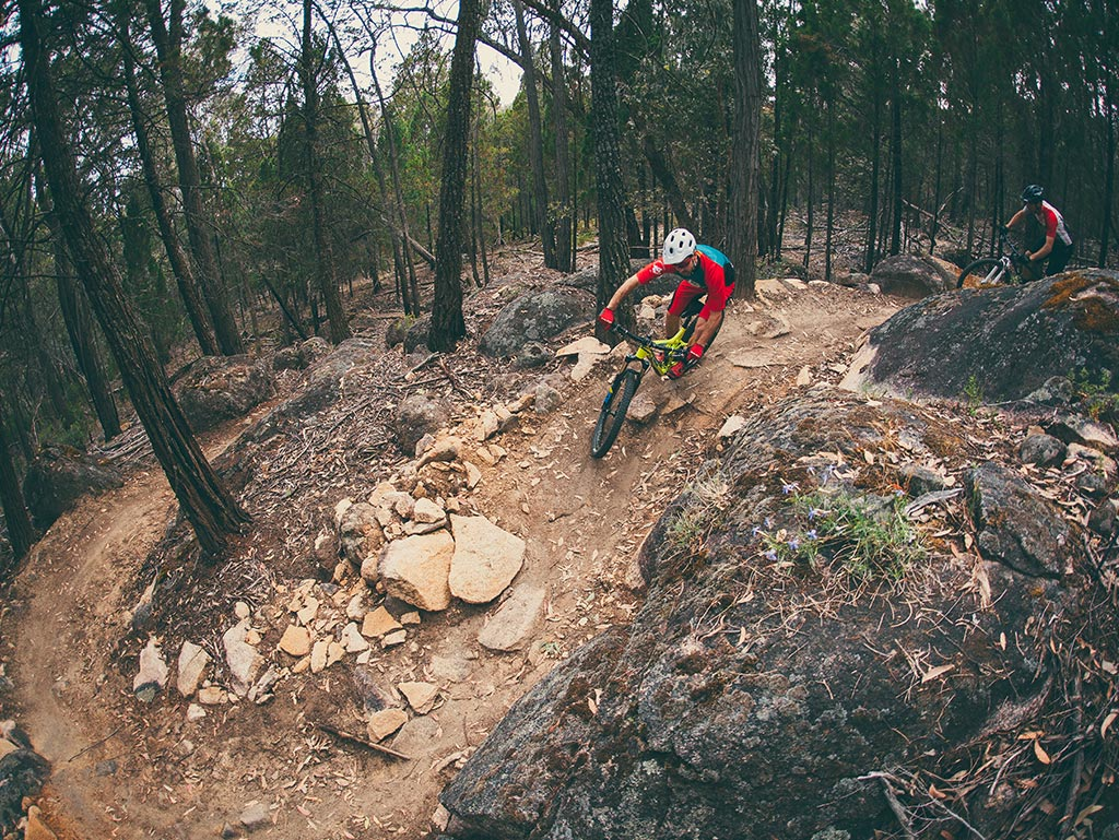 Beechworth Mountain Bike Park Ride High Country