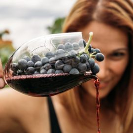 From grape to glass